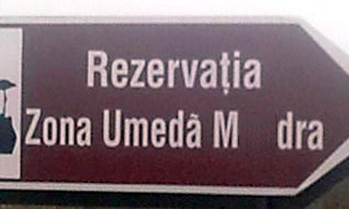 zona-umeda1